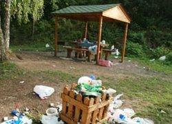 Московские парки гибнут под тоннами мусора