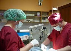 Что  ищут люди в кабинете пластического хирурга?