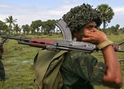 В результате столкновений на Шри-Ланке уничтожен 31 боевик