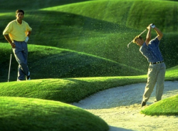 Самый большой в мире гольф-центр построят в Нидерландах