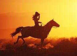 Жизнь дикого Запада