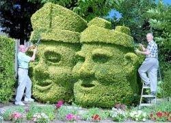 В Англии соревнуются безумные садовники