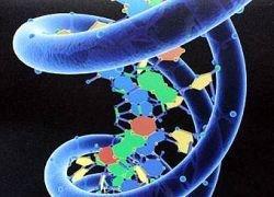 Инвестфонды финансируют генные исследования