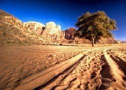Единственная в Европе пустыня на грани исчезновения
