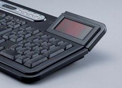 Buffalo: клавиатура на солнечной энергии