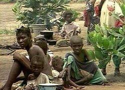 ООН уйдет из Африки из-за участившихся убийств сотрудников