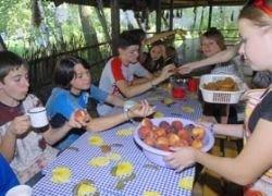 На Сахалине отравился детский лагерь