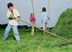 Работа на даче — угроза для детского здоровья