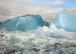 ВВС: До кризиса из-за глобального потепления осталось всего 100 дней