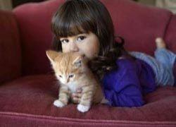 Пассивное курение и аллергия на кошек взаимосвязаны?