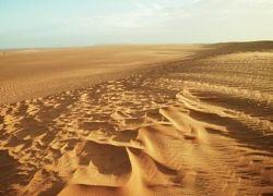 Сахара обеспечит Европу светом