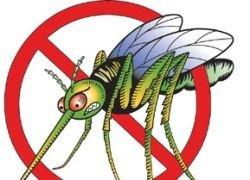 Самые изощренные способы убийства комаров