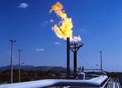 Россия лидирует в мире по потерям попутного газа