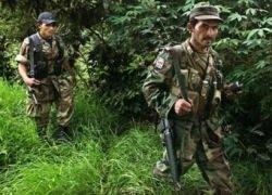 ВВС Колумбии разбомбили лагерь FARC