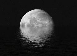 Ученые НАСА предлагают выращивать на Луне растения
