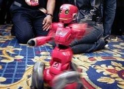 В Японии разработали робота, который читает романы
