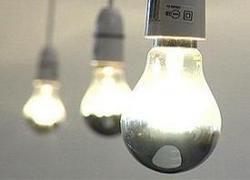 Всю Америку можно освещать навозом в течение 10 дней