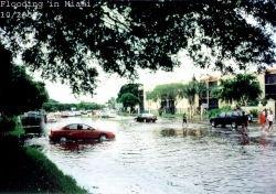 Чрезвычайное положение введено на Буковине