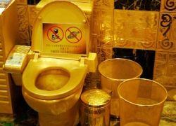 Бюджет не пожалел золота для туалета президентского самолета