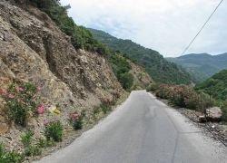 Транскавказскую магистраль намерены превратить в проект века
