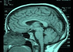 Семь мифов об IQ