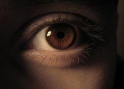 Офтальмологи открыли новый способ восстановления зрения