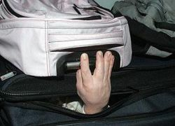 В Швеции пытались провезти в чемодане карлика