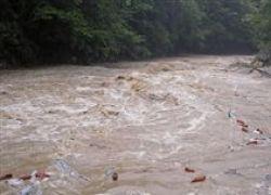 Ущерб от наводнения на Украине оценили в $800 млн