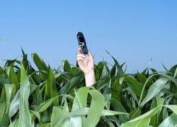 Мобильные будут делать из кукурузы