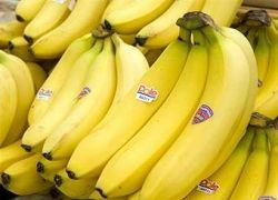 Европейцы и латиноамериканцы окончили банановую войну