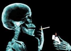Активных и пассивных курильщиков убивает собственная иммунная система