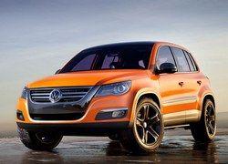 Volkswagen Tiguan: проворная игуана и свирепый тигр в одном кузове