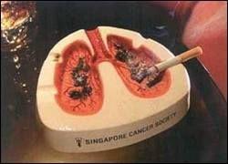 Проходят исследования новой вакцины против курения