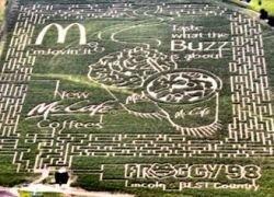 McDonald's разместил рекламу на кукурузном поле
