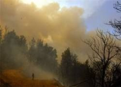 Север Греции охвачен сильными пожарами