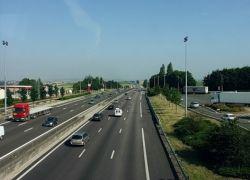 На шоссе во Франции выбросили тонны останков животных