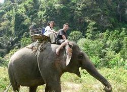 Необычные способы передвижения для туристов