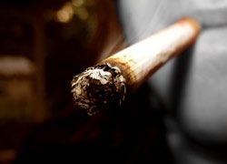 Канада предоставит $300 млн на кампанию против выращивания табака