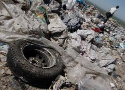 Как воздействуют мусоросжигательные заводы на москвичей?