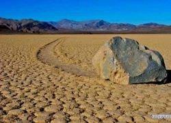 Удивительные ползающие камни