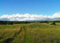 Почему жители бескрайней России не могут купить участок земли?