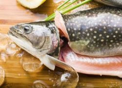 Рыба помогает японцам бороться с сердечными заболеваниями