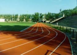 Еще 11 российских атлетов могут быть дисквалифицированы