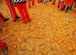 Апельсиновое сражение в итальянском городе Ивреа