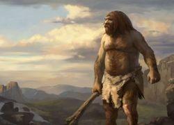 Расшифрован геном неандертальца