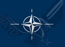 Представители НАТО не едут в Грузию
