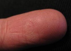 Разработана новая методика получения отпечатков пальцев