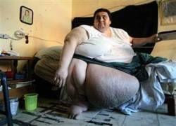Самый толстый человек отправился на пикник прямо в кровати