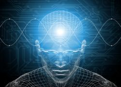 Установлен фактор, определяющий способность мозга учиться