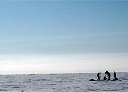 Канада и США отберут у России арктическую нефть?